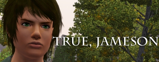 True, Jameson Banner (white font)